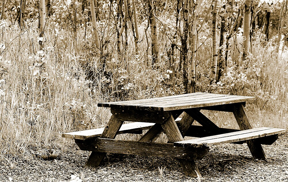 Weathered Picnic Table in a Forest by rhamm