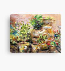 Garden Pots Canvas Print
