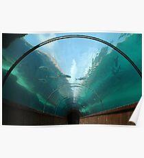 Atlantis Tunnel Poster