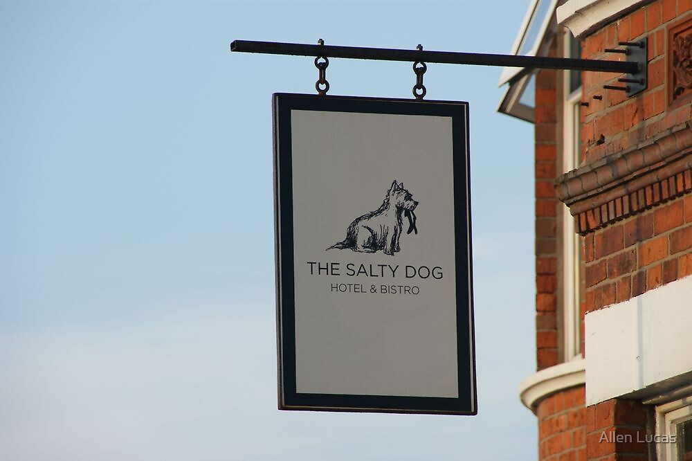 The Salty Dog Hotel and Bistro by Allen Lucas