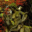 Diana The Hunter - Breenhold, Mt Wilson by Gabrielle  Lees