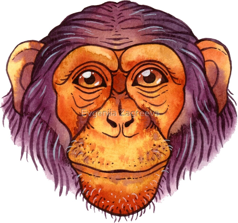 Watercolor chimpanzee by Evgeniia Zagreeva