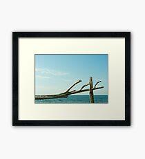 Gotland Framed Print