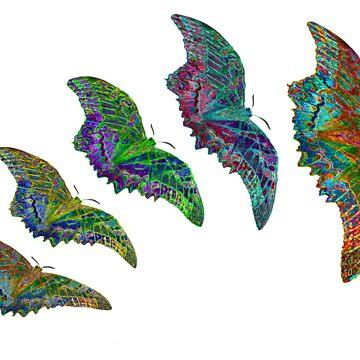 Flutterfly II by mrthink