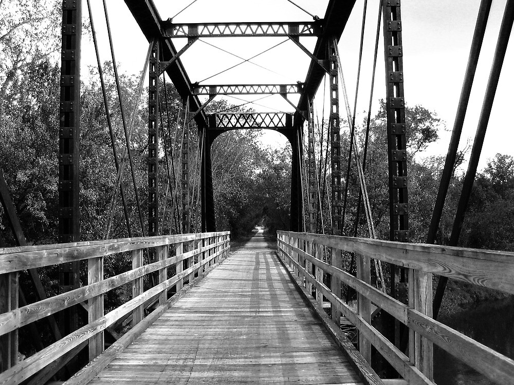 Wood and Metal Bridge 2 by Emily Rose