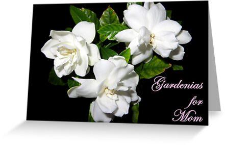 Gardenias For Mom by AuntDot
