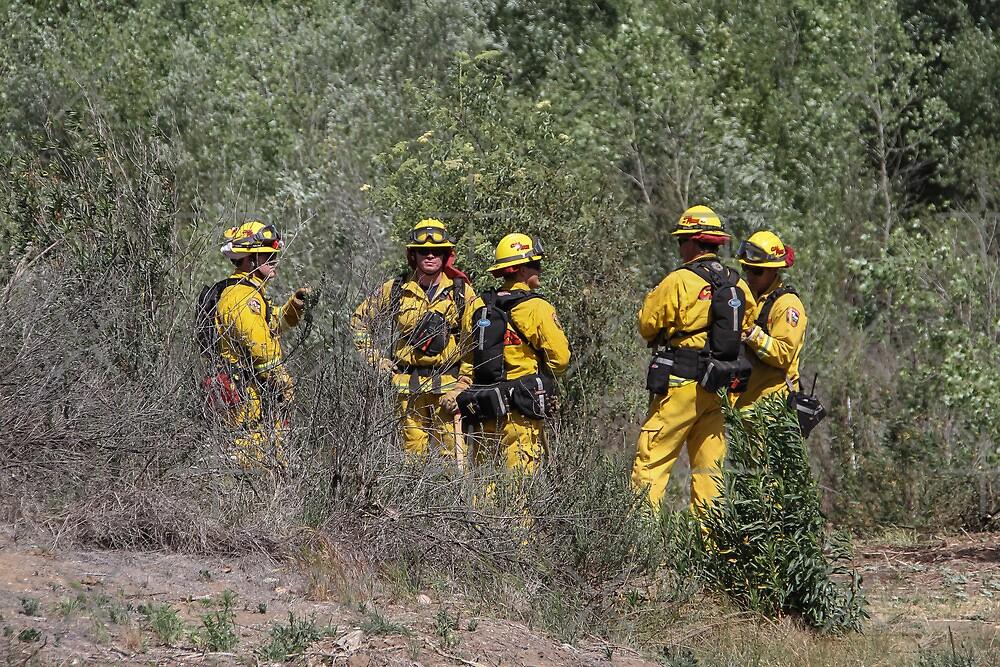 Santee Firemen by Heather Friedman