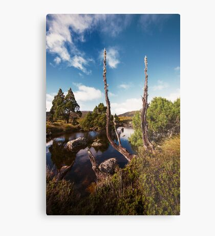 Tarn it Metal Print
