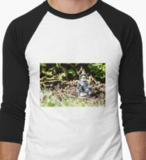 Sir Gleamalot Men's Baseball ¾ T-Shirt