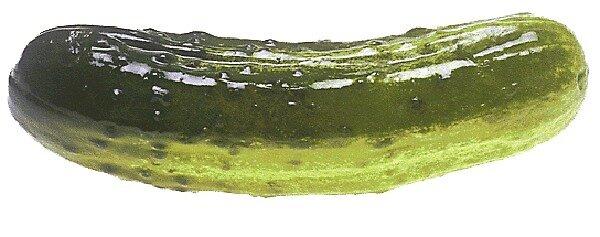 Pickle  by KnightSteel