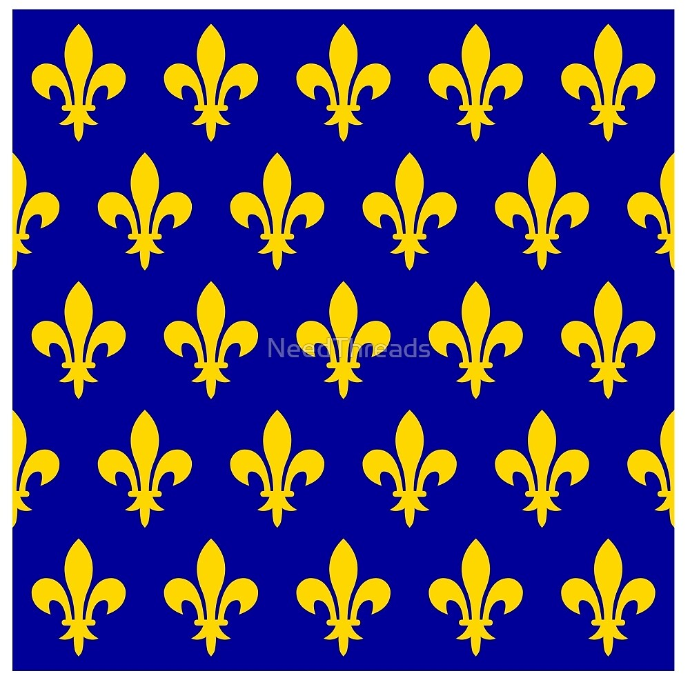 France 12-13 Century Flag by NeedThreads