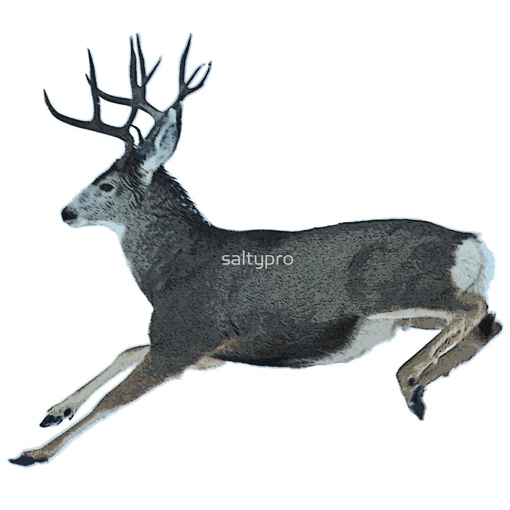 Mule deer motion  by saltypro