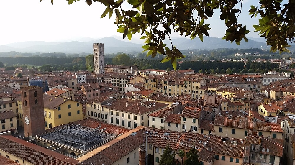 Lucca from Guinigi Tower by kkayden