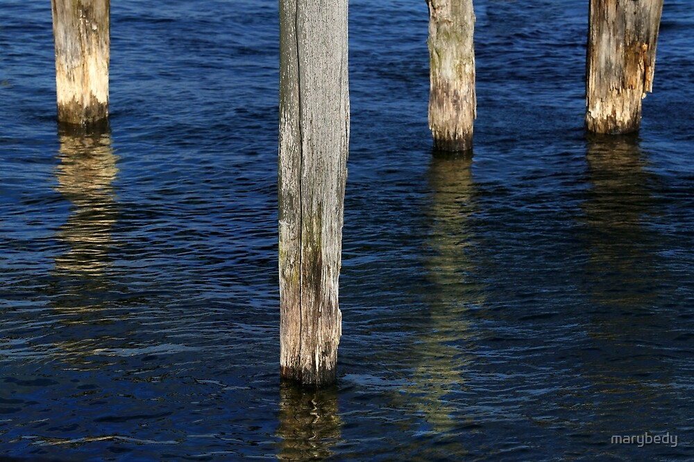 Four Old Pilings by marybedy