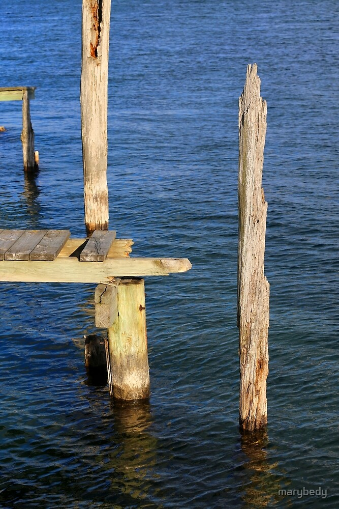 Old Dock Remains by marybedy