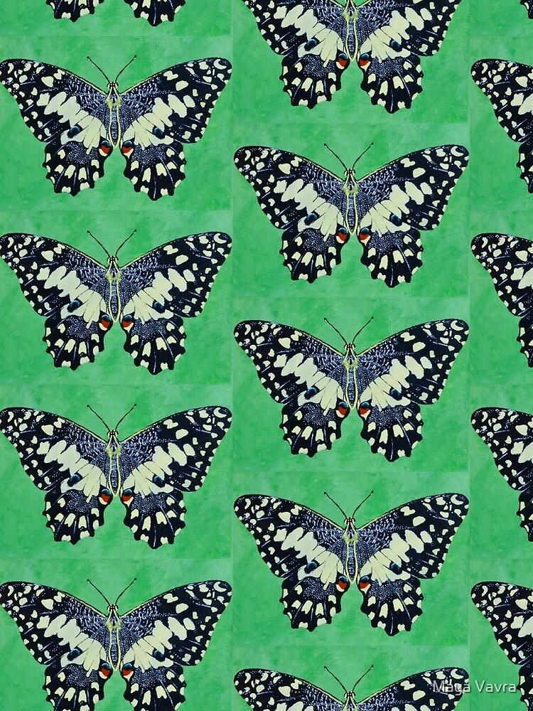 Butterfly #1 by mayavavra