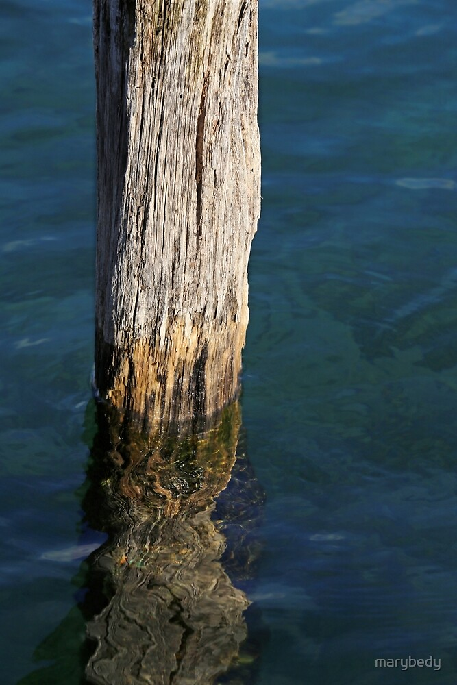 Single Old Piling 5 by marybedy