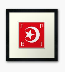 Nation Of Islam Flag Framed Print