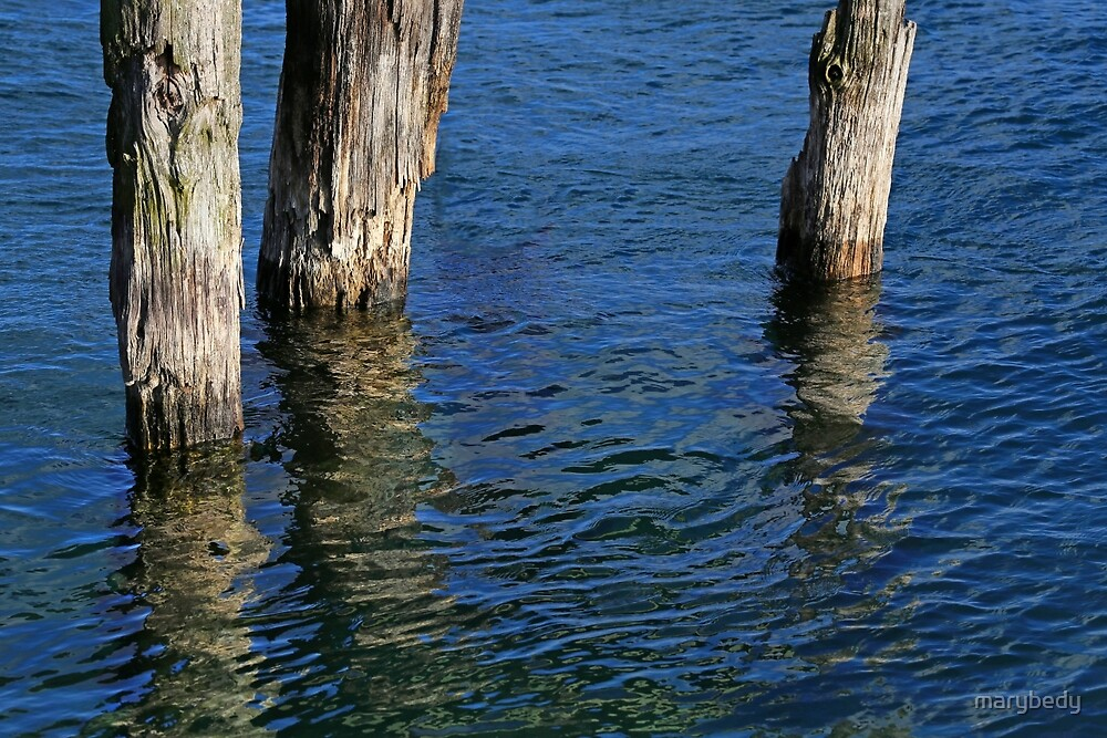 Three Old Pilings by marybedy