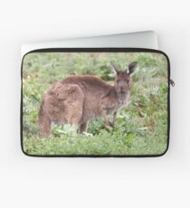 Western Grey Kangaroo Laptop Sleeve