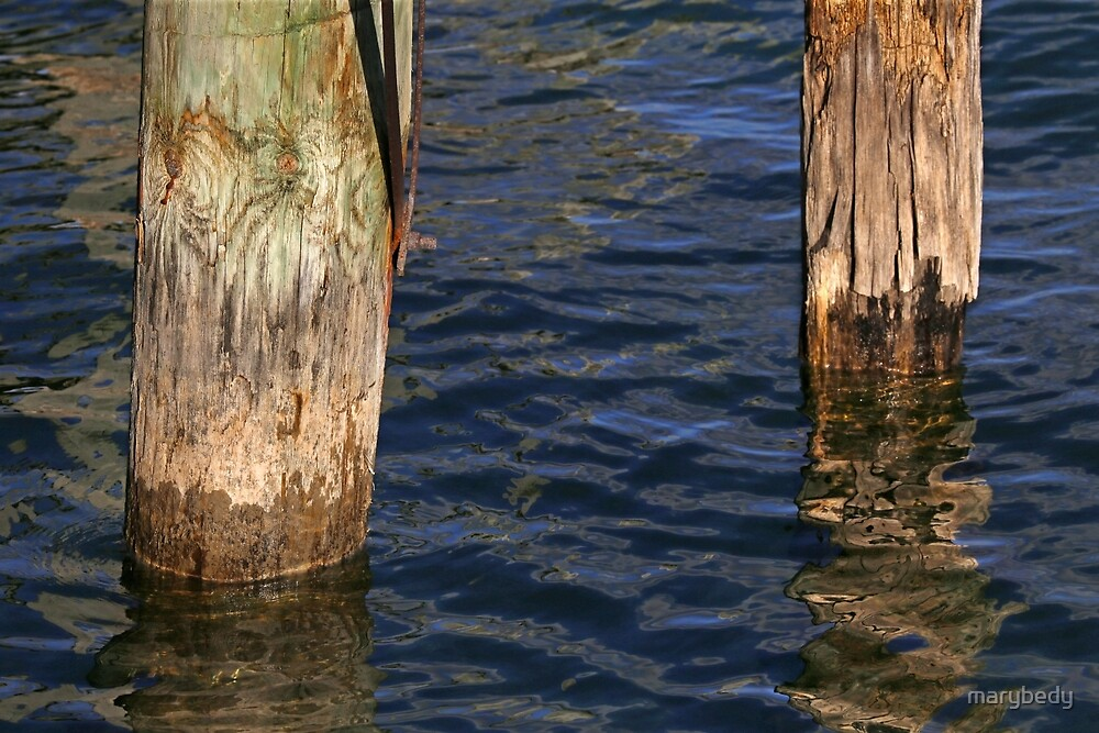 Two Old Pilings 3 by marybedy