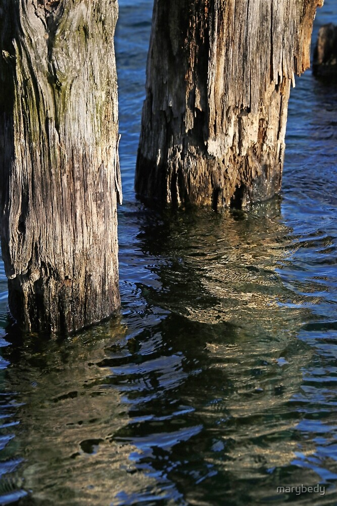 Two Old Pilings 4 by marybedy
