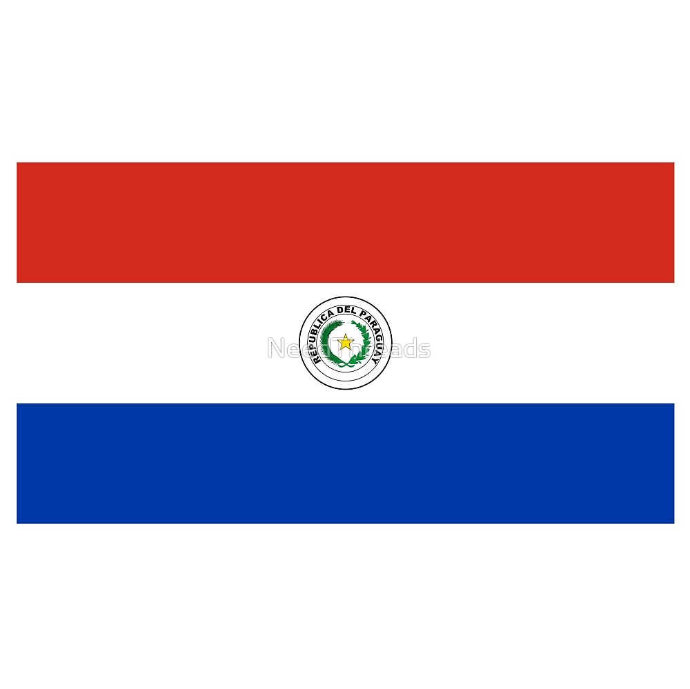 Paraguay Flag by NeedThreads