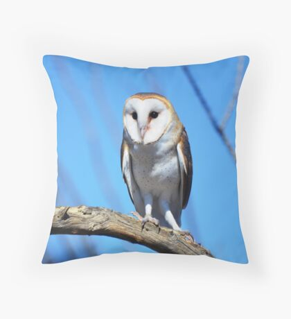 Looking for partner Throw Pillow