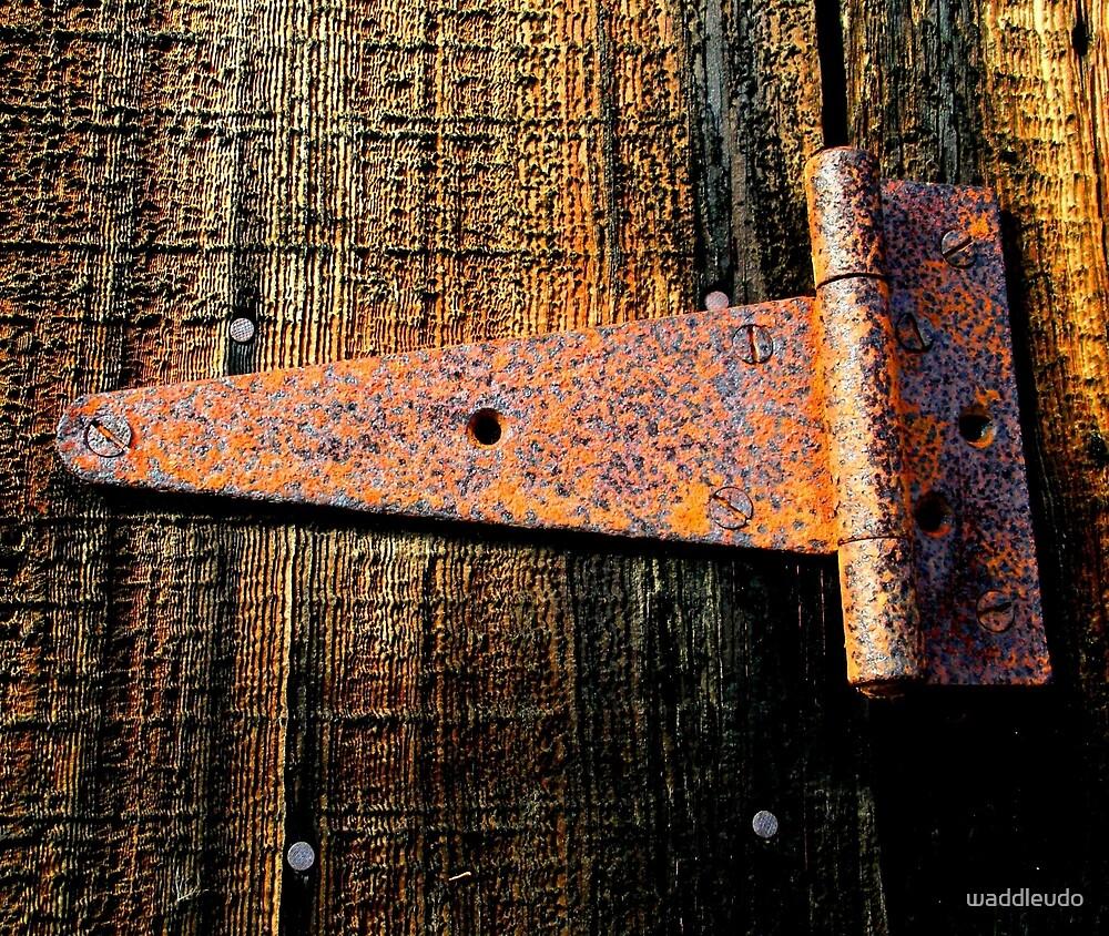 """""""Rusting Hinge on Barn Door"""" BEST VIEWED LARGE by waddleudo"""