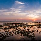 Shallow Tides by Motti Golan