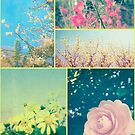 Spring Flowers Collage Plum Blossom Aster Dogwood Camellia by Beverly Claire Kaiya