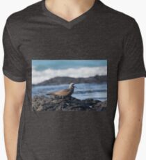 Brown Noddy Calling T-Shirt