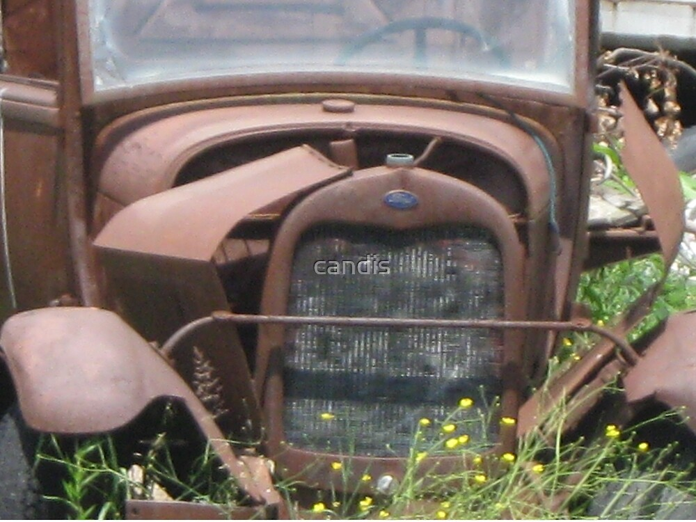 Ford by candis