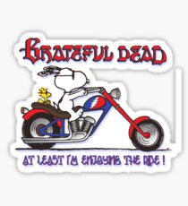 At Least I'm Enjoying the Ride Sticker