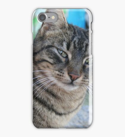Inquisitive Tabby Cat With Green Eyes iPhone Case/Skin