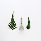 Eiffel Tower and Ferns by Candypop