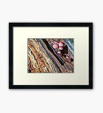 geological fault Framed Print