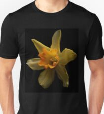 First daffodil of spring T-Shirt