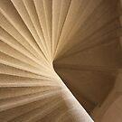 Spiral by Hayley Bohn