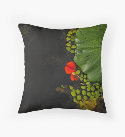 Beauty Spot  Throw Pillow