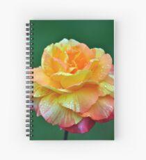 Orange hybrid tea rose Spiral Notebook