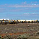 Long train a long way from anywhere. South Australia. by johnrf
