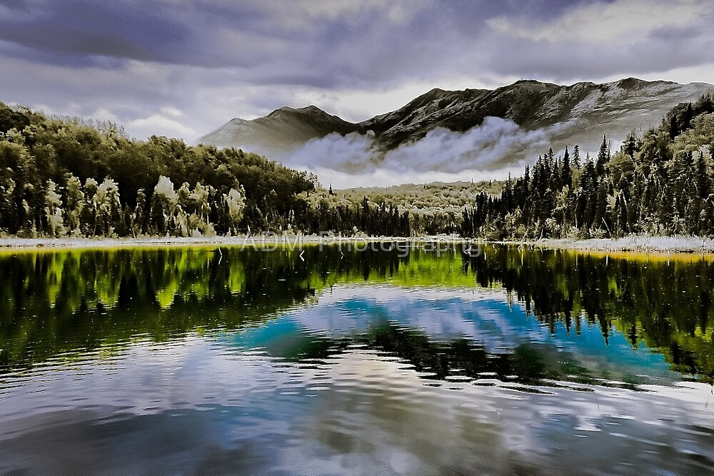 Reflection - Anchorage, Alaska by Amber D Hathaway Photography