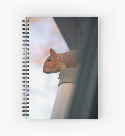 Don't mind me, I'm just waiting Spiral Notebook
