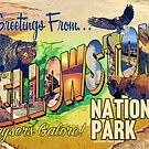 Greetings from Yellowstone National Park by Anthony Ross