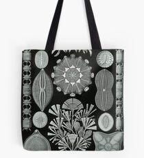 Haeckel Diatomea Tote Bag