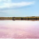 Pink Lake by James McKenzie