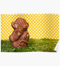 Chocolate monkey on the grass Poster