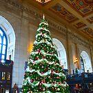 Union Station Christmas Tree, Kansas City, Missouri by Catherine Sherman