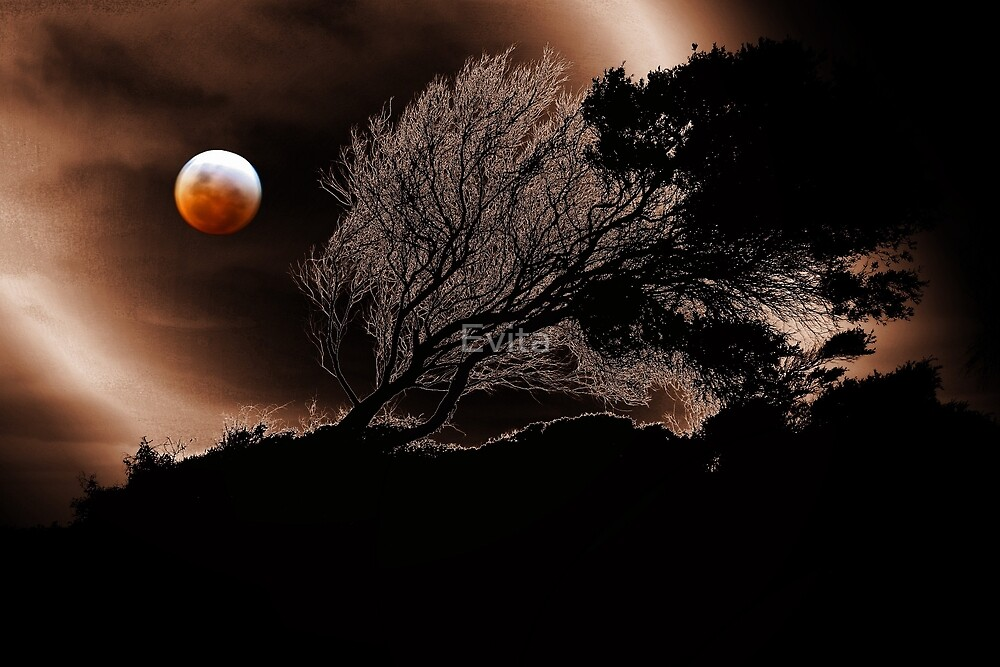 Blood Moon by Evita